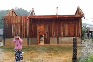 2 phụ nữ ở Lâm Đồng thiệt mạng do bão Damrey