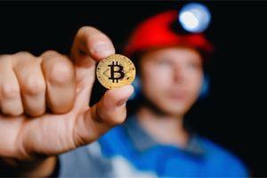 Đâu là nơi tốt nhất cho những người đào Bitcoin?