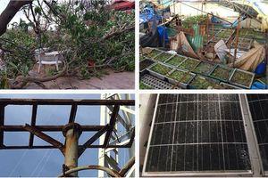 Chùm ảnh: Những thiệt hại đầu tiên do ảnh hưởng của bão Tembin