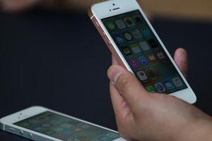 iPhone SE 2 sẽ trang bị màn hình 4,2 inch