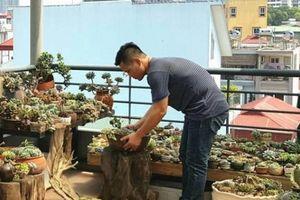 'Thiên đường' sen đá khủng-lạ- hiếm hàng trăm loại của anh trai Hà thành