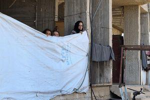 Liên hợp quốc tiếp tục báo động về tình hình bạo lực tại Syria
