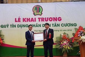 Bảo hiểm tiền gửi Việt Nam triển khai đồng bộ nhiều giải pháp để bảo vệ người gửi tiền tốt hơn