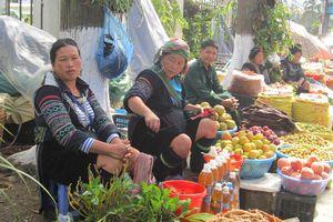 Du lịch giữa mùa quả ngọt Tây Bắc