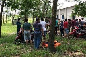 Bình Phước: Phát hiện một thi thể nhét trong bao tải tại vườn cao su
