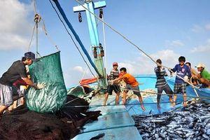 Đề xuất tăng cường truy xuất nguồn gốc thủy sản