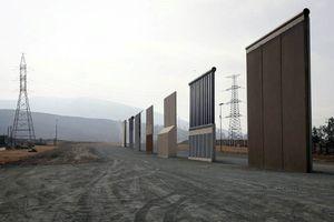 'Bức tường Mỹ - Mexico' đe dọa động vật hoang dã
