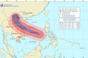 Siêu bão Haiyan đổ bộ vào miền Trung