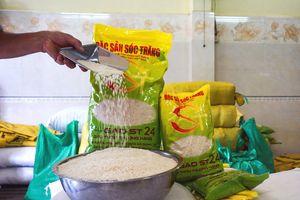 Gạo ST24 vào Top 3 gạo ngon nhất thế giới