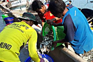Thiếu nhân công, Thái Lan nâng lương tối thiểu để thu hút lao động Việt Nam