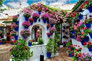 'Ngẩn ngơ' trước những ngôi nhà ngập tràn hoa cỏ đẹp như cổ tích