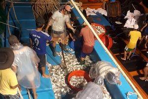 Chuyện về ngư dân 'Tàu 67' ba chuyến vươn khơi, thu 4 tỷ đồng