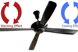 Những cách 'chống nóng' đem lại hiệu quả