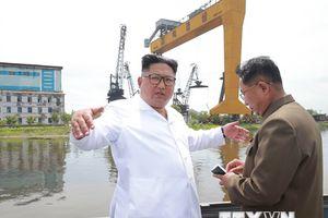 Nhà lãnh đạo Triều Tiên Kim Jong-un thị sát các cơ sở kinh tế