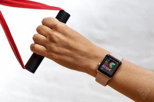 Apple tạo chip mới chuyên theo dõi dữ liệu sinh trắc học