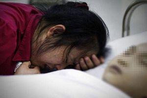 Bé gái tử vong vì ong đốt, bài học cảnh tỉnh cho các bậc cha mẹ