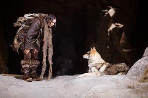 'Alpha' - câu chuyện cảm động về tình bạn giữa người và những chú chó