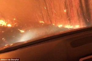 Nóng nhất hôm nay: Thoát chết trong gang tấc khi lái xe băng qua biển lửa cháy rừng ở Mỹ