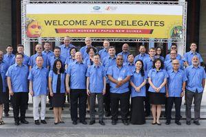 Hội nghị Quan chức cao cấp APEC lần thứ 3 (SOM 3)