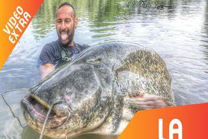 Những loài thủy quái khổng lồ nhất trên sông