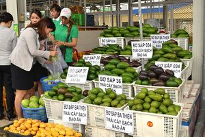 Nông dân địa phương khó đưa nông sản vào chợ Dầu Giây
