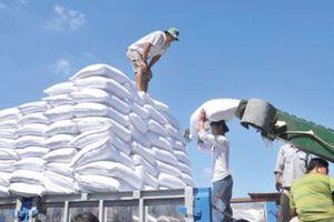 Đấu giá nhập khẩu 94.000 tấn đường theo hạn ngạch thuế quan năm 2018