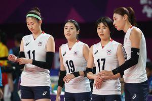Dàn chân dài bóng chuyền Hàn Quốc gây sốt ở Asiad