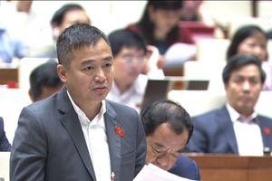 Cựu học sinh Thực nghiệm PGS. TS Nguyễn Lân Hiếu nói về 'cách đánh vần mới'