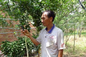 Người nông dân học hết lớp 9 và hệ thống phun thuốc, tưới cây tự động chỉ bằng một chiếc điện thoại