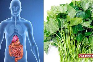 5 loại thực phẩm giúp làm sạch ruột, trị táo bón hiệu quả