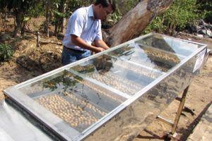 Máy sấy thực phẩm năng lượng mặt trời