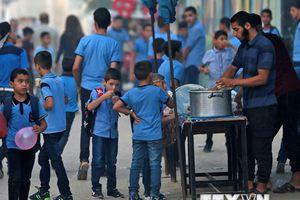Đức sẽ tiếp tục tăng đóng góp cho UNRWA để giúp đỡ người Palestine