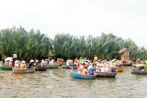 Cần dẹp bỏ tình trạng 'vũ trường di động' trong rừng dừa Bảy Mẫu
