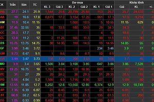 Thị trường đỏ rực, blue-chip đua nhau giảm giá