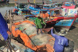 TP.HCM: Tiếp tục hỗ trợ ngư dân trong khai thác thủy hải sản