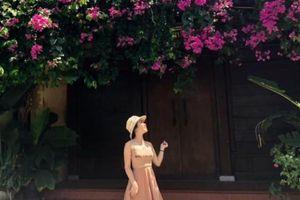 Du khách rộn ràng check-in với giàn hoa giấy đẹp lịm tim ở Hội An