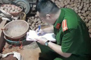 Sốc: 578 tấn khoai tây Trung Quốc nhập về Đà Lạt chỉ trong 90 ngày
