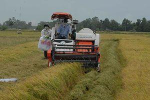 Nhiều 'vũ khí' xóa ngành nông nghiệp hóa chất
