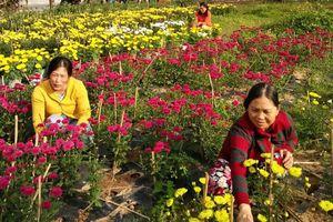 Các cấp hội phụ nữ Phú Yên đẩy mạnh học và làm theo Bác 