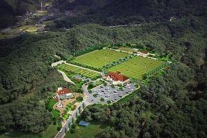 Khu thể thao Son Heung-min tại quê nhà sắp hoàn thành