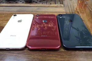 Chiếc iPhone 'nóng' nhất sắp ra mắt sẽ rất khó mua trong thời gian đầu