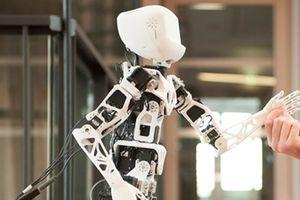 Al, robot và cơ bắp nhiều nhưng rẻ