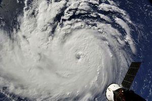 Mỹ sơ tán hàng triệu người tránh bão Florence