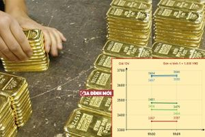Giá vàng hôm nay 11/9: Giá vàng thế giới và trong nước 'kéo nhau' giảm