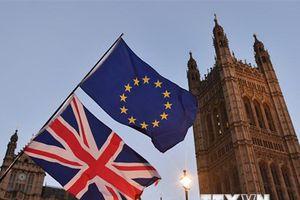 Liệu 'chiếc cầu mềm' Brexit không phải là giải pháp kỳ diệu?