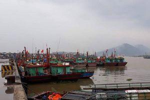 Thanh Hóa: Công điện khẩn ứng phó với bão số 5 và bão Mangkhut