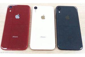 iPhone 6.1 inch giá rẻ sẽ có khay đựng sim 5 màu khác nhau