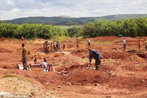 Nông trang của vợ cựu Tổng thống Zimbabwe bị thợ mỏ 'xới tung' để tìm vàng