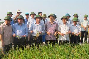 Bước chuyển kinh ngạc ở Thanh Hóa
