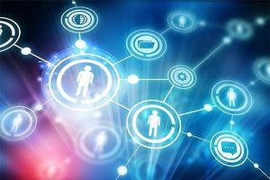 Thiếu dữ liệu quốc gia, dựa vào đâu để xây dựng Chính phủ điện tử?